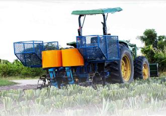 mesin penanam nanas